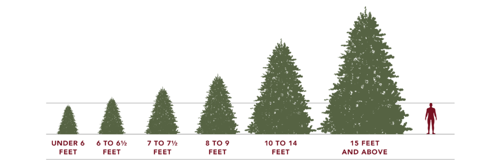 Artificial Christmas Tree Sizes.Guide To Choosing An Artificial Christmas Tree Balsam Hill