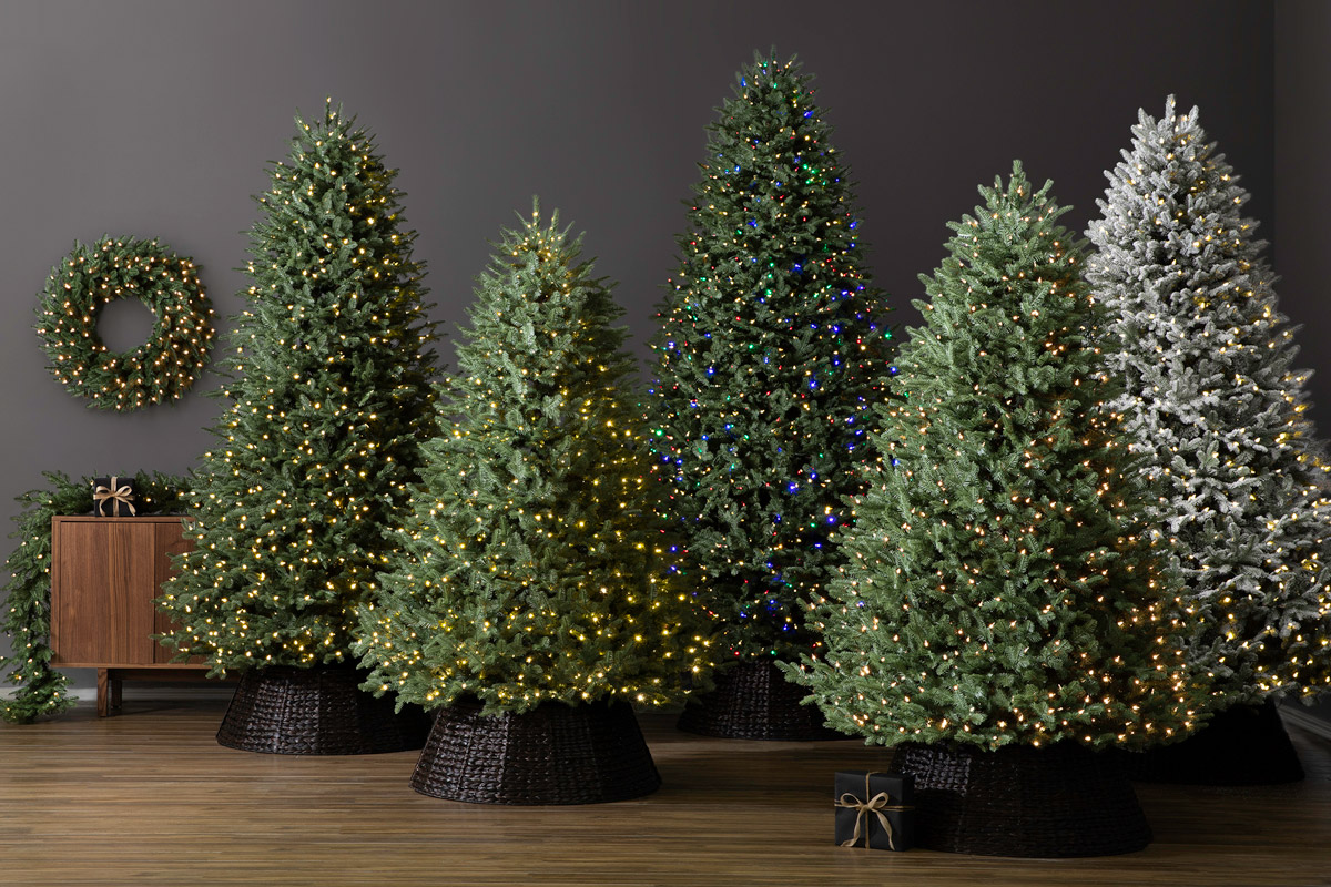 various artificial Christmas trees with lights