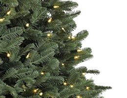 BH Balsam Fir Close Up Black Friday Sale