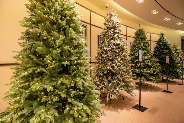 Balsam Hill trees in stores for viewing and purchase