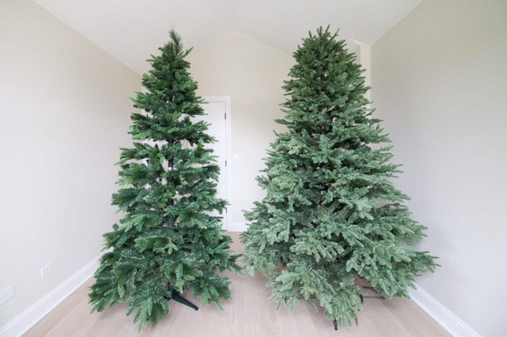 Side-by-side set up of Balsam Fir trees from a big-box store and BH