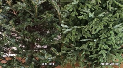 Close up shots of a real tree and BH artificial tree