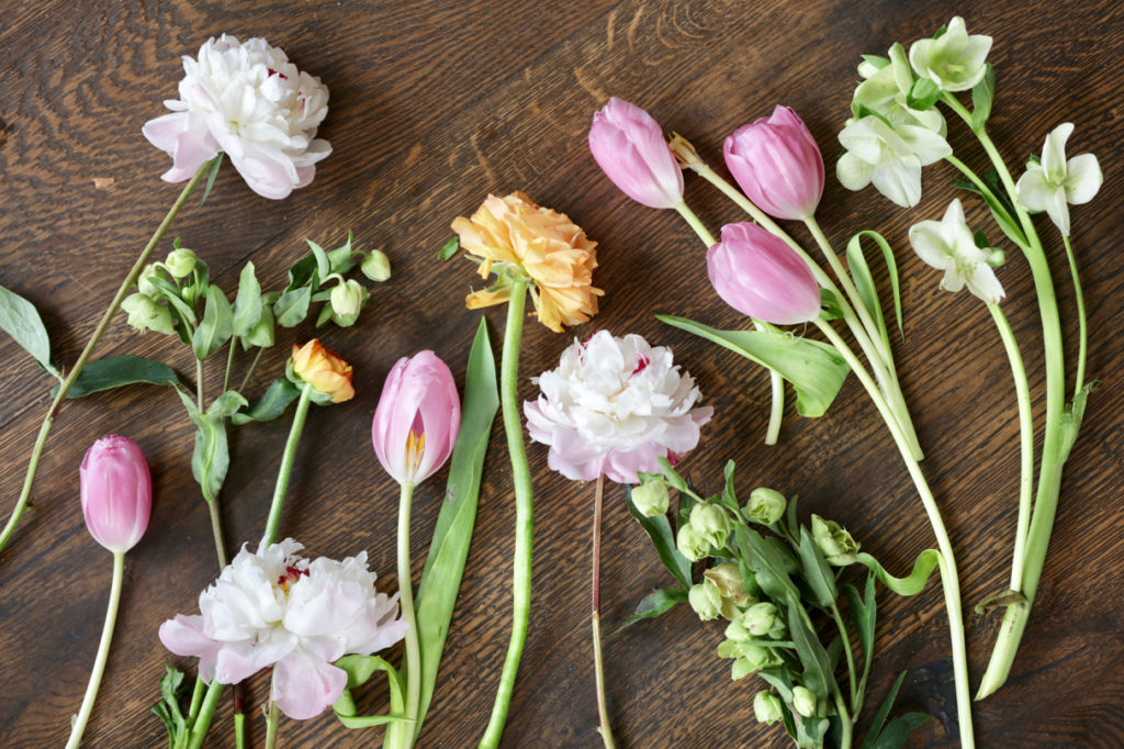 Fresh blush peonies, green and white hellebores, pink tulips, and yellow and orange ranunculus