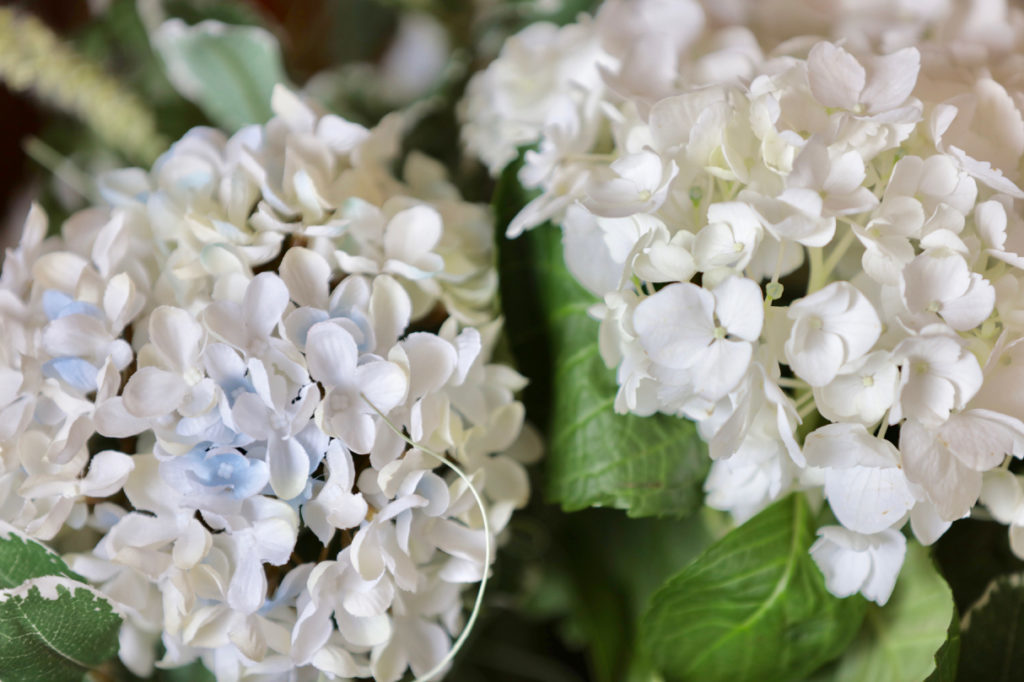 Real and faux white hydrangea flowers