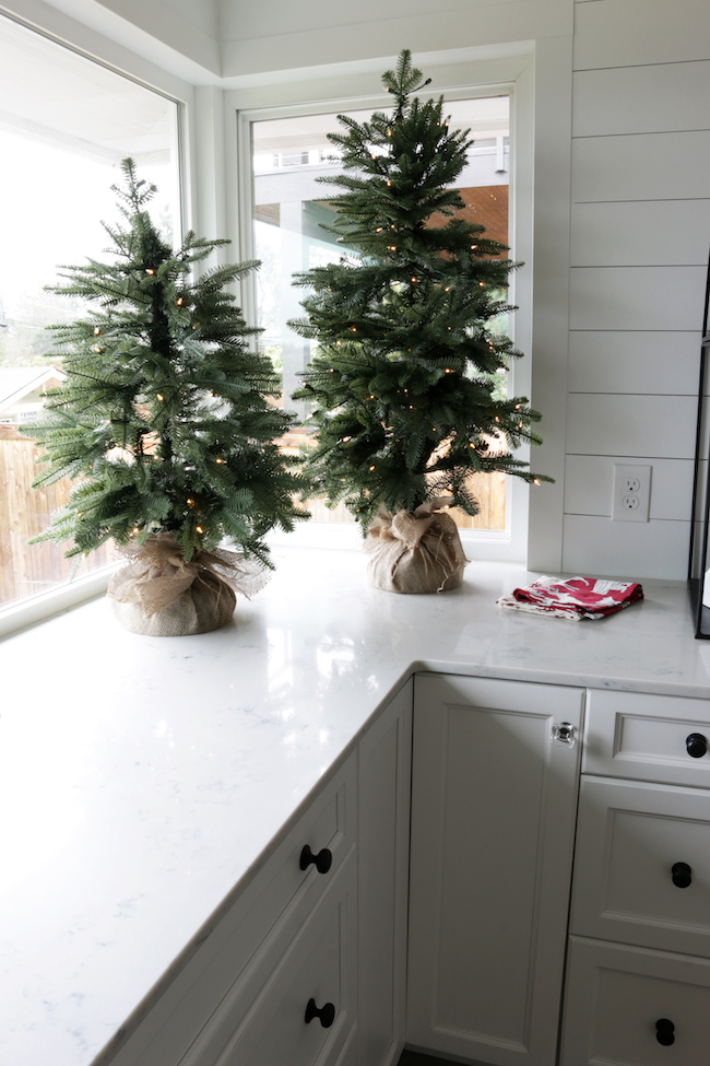 Small tabletop tree on counter