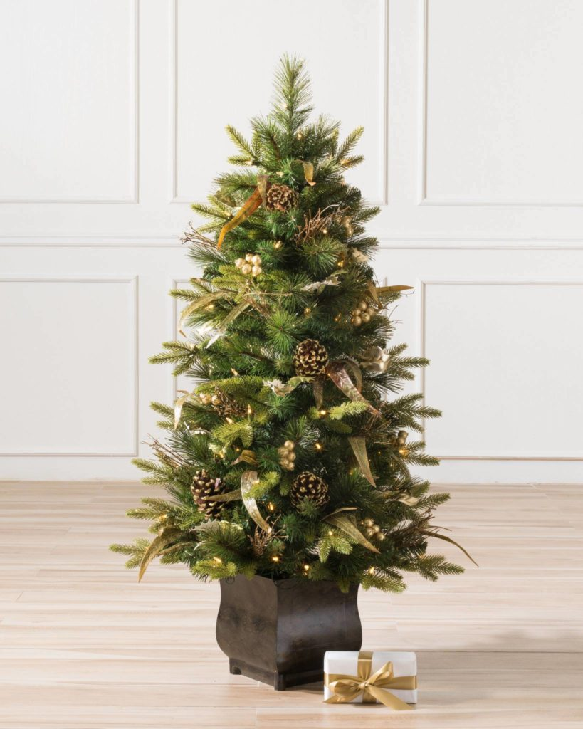 Balsam Hill Coloma Golden Pine Small Potted Tree in living room floor