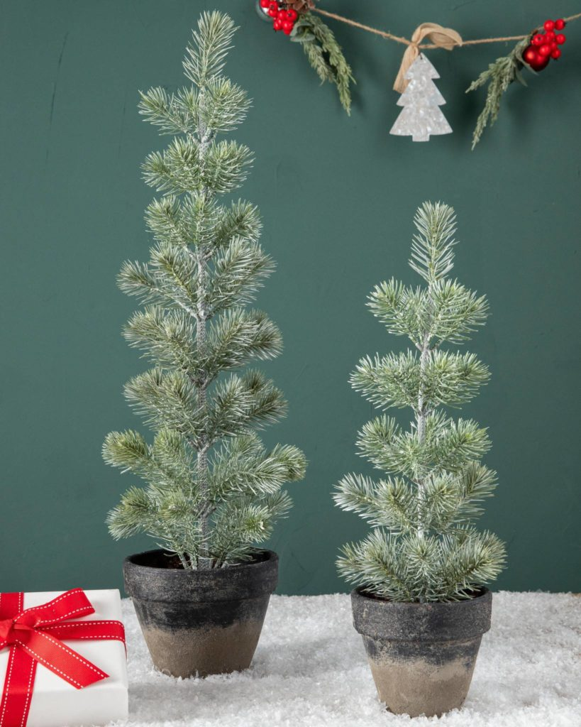 Balsam Hill Green Tabletop Potted Spruce Small Trees on teal background