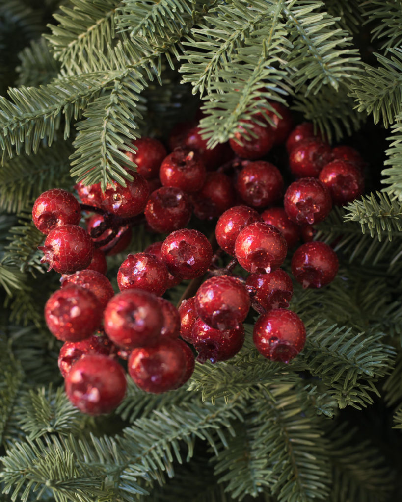 close up of red berry tree picks