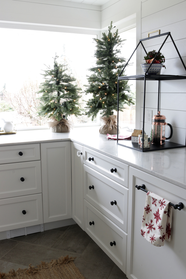 A pair of tabletop evergreen trees in burlap sack on kitchen counter