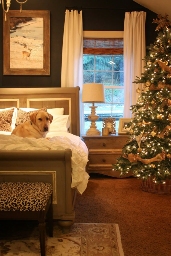 A dog on the bed with a lit-up Christmas tree to the right