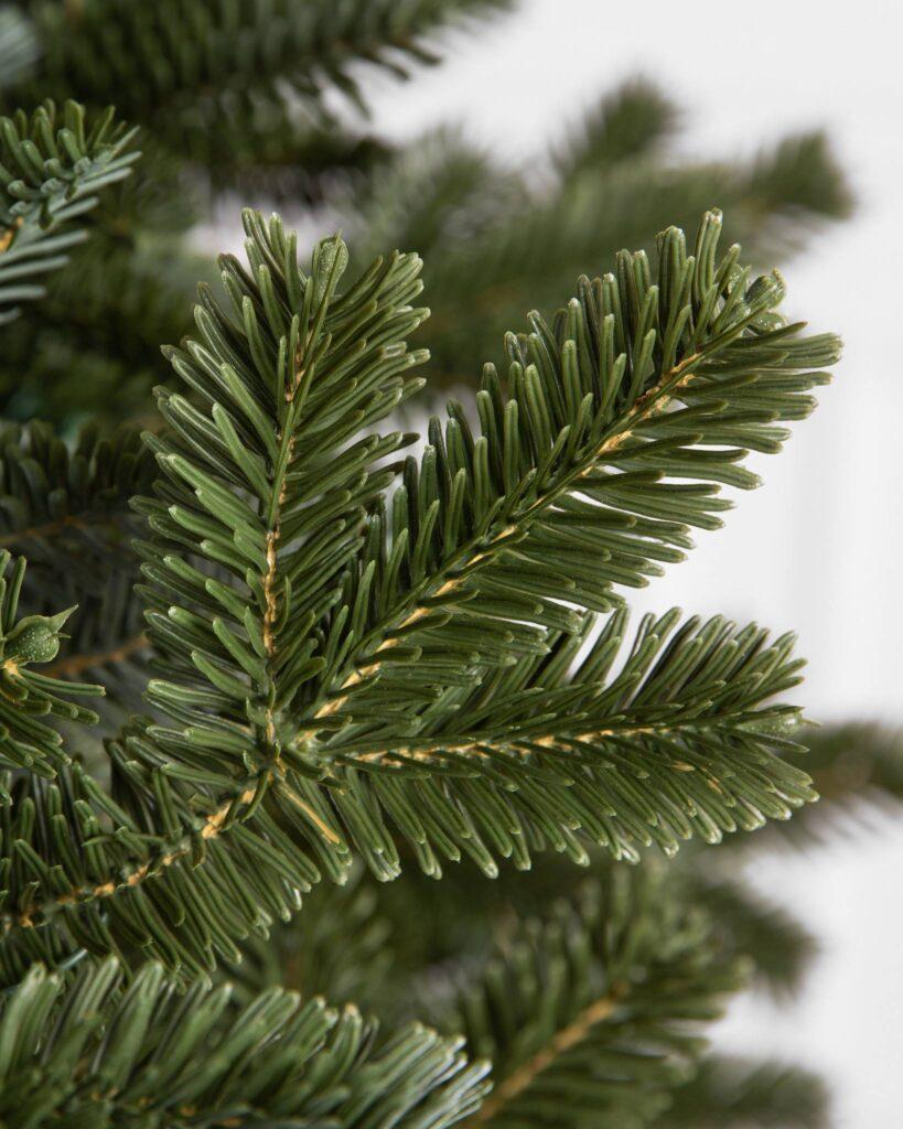 Balsam Hill BH Fraser Fir Christmas Tree Foliage Detail