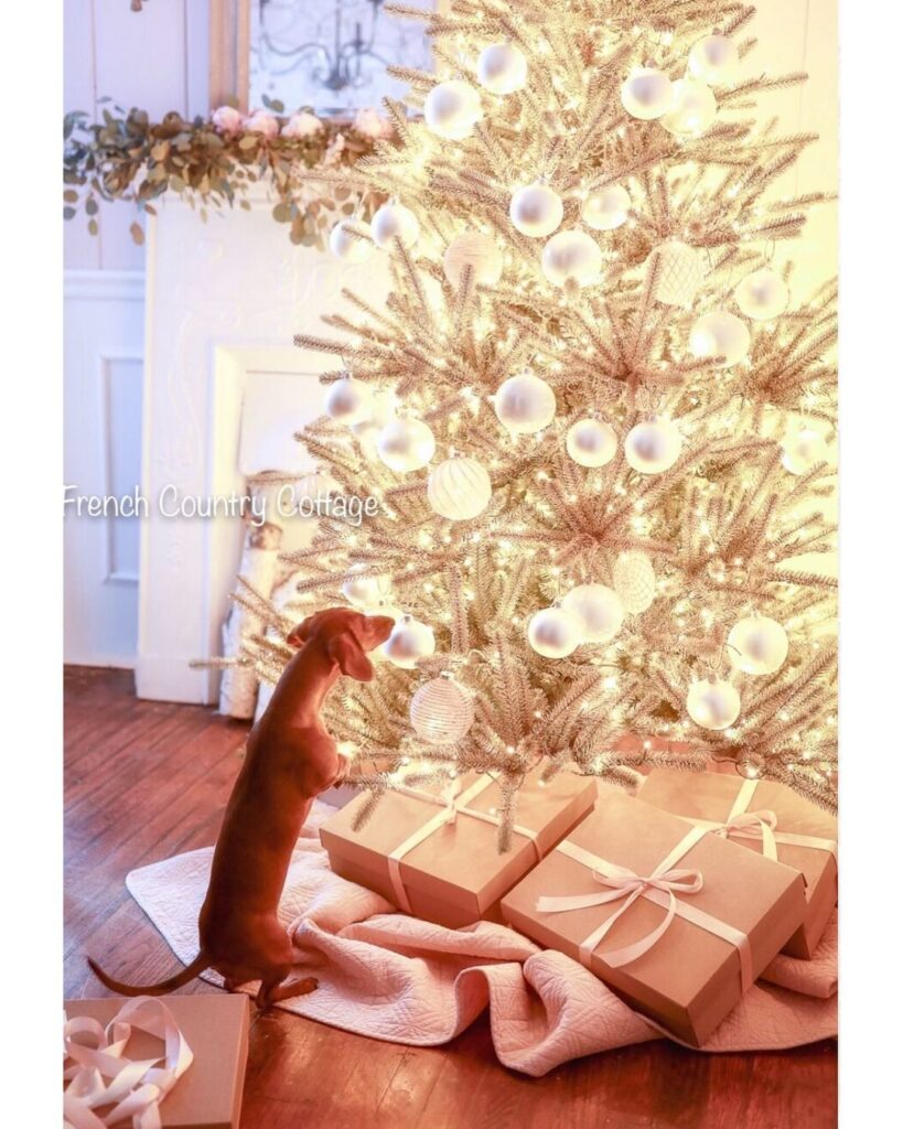 pet-friendly christmas tree with lights