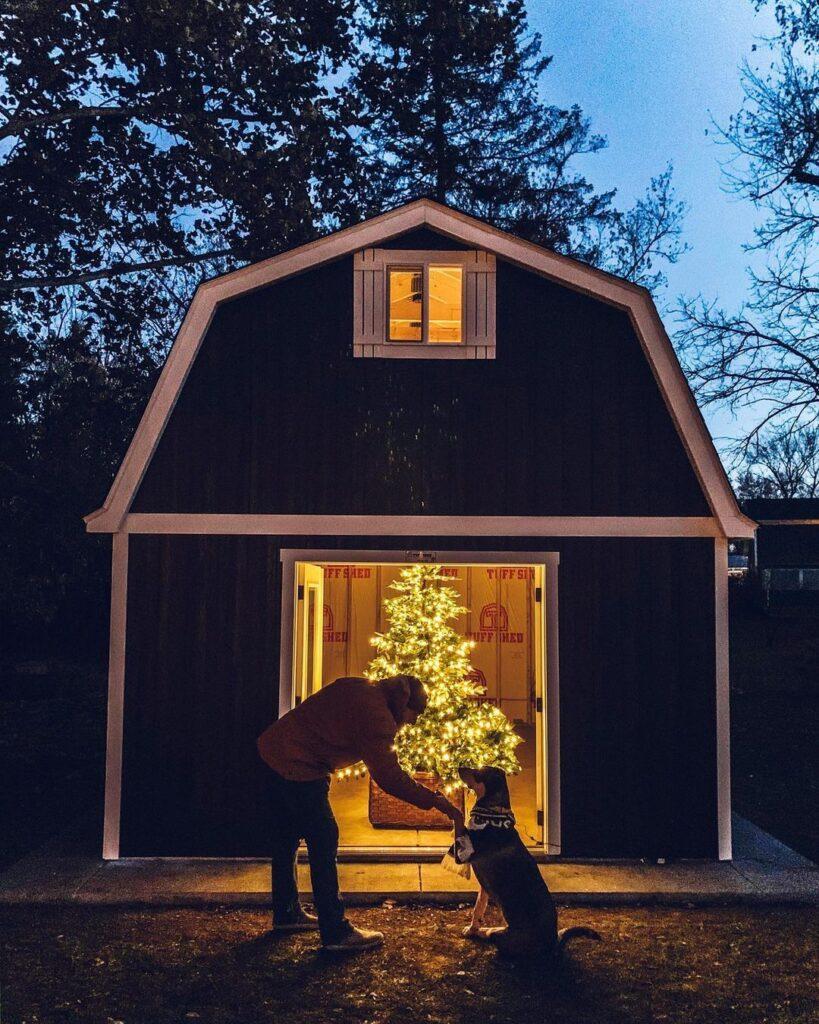 pre-lit Christmas tree in barn